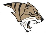 Tiger Athletics and Athletic Forms Main Page Image