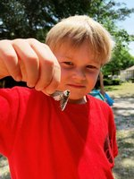 K5 Southland Academy student, Henry Hart, is up close and personal with the insect--a moth--he found during his adventure walk.