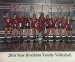 Volleyball - Varsity, JV, & JH Main Page Image