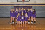 Varsity Volleyball Main Page Image