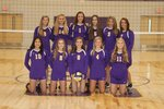 Junior Varsity Volleyball Main Page Image