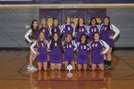 Junior Varsity Volleyball Main Page Image