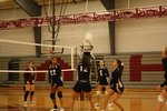 Volleyball Main Page Image