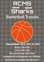 Shark Basketball