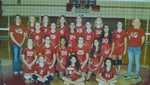 JH Volleyball Main Page Image