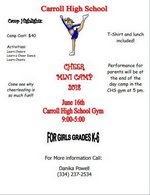 Mini Cheer Camp Flyer