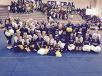 View 2015 Cheer