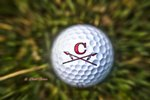 Golf (Boys) Main Page Image
