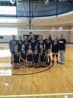 Girls Volleyball Main Page Image