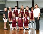 JV Volleyball Main Page Image