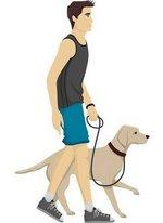 Man walking a dog clipart