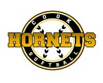 Lady Hornet Softball Main Page Image