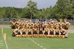 Hornet Cheerleading Main Page Image