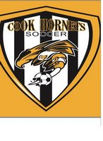 Hornet Soccer Main Page Image