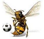 Hornet Soccer