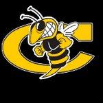 Hornet Baseball Main Page Image