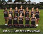BEMS Cheerleading Main Page Image