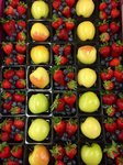 View A Rainbow of Fruit Options