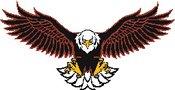 Liberty Eagles