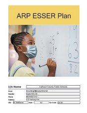 The American Rescue Plan (ARP)
