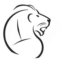 Lions Online Academy  Image