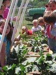 View CSES Garden: Project Diabetes Grant 2011-2012