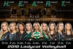 View Varsity Ladycat Volleyball Bi-District Champions